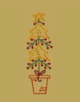 Star Pine-4x4